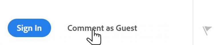 grafika-comment-as-guest.png